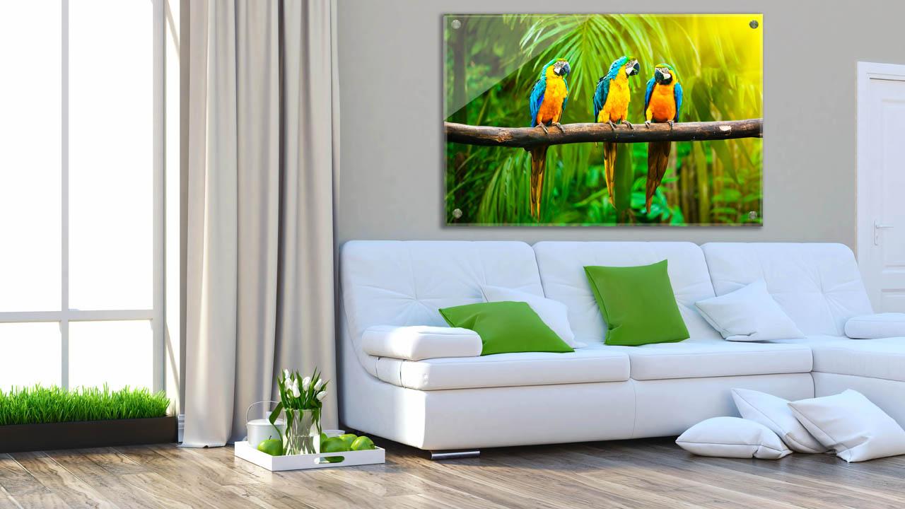 תמונת טבע ונופים לסלון הבית - חיוכים